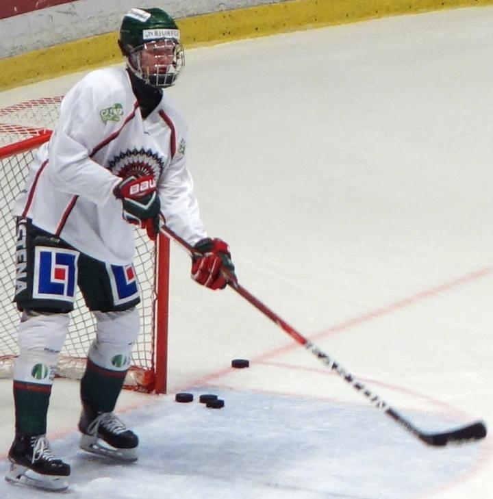 NHL Draft LotteryPrimer